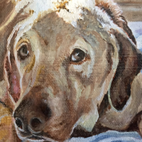 Callie - Original oil painting by Eric Soller